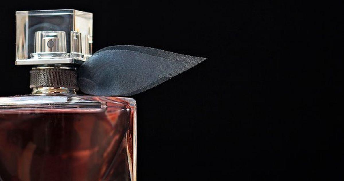 Estee Lauder Fragrance Brands